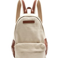 The Canvas Backpack